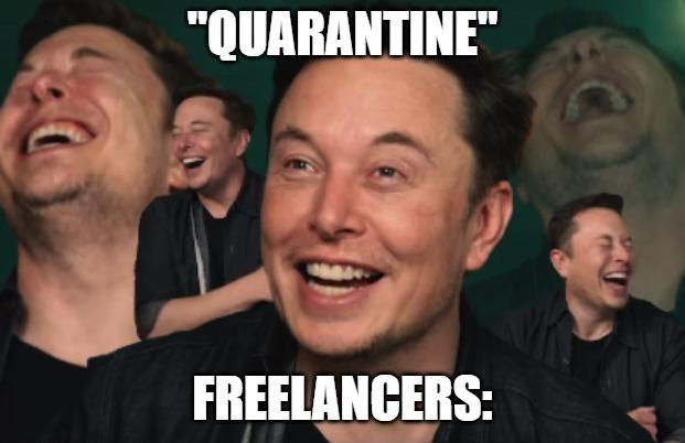 Elon Musk is laughing